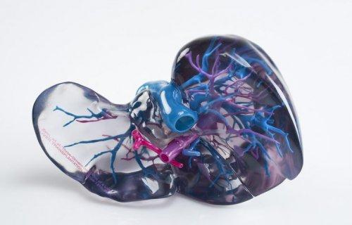 La solution d'impression 3D la plus polyvalente en matière de médecine  validée avec un logiciel approuvé par la FDA