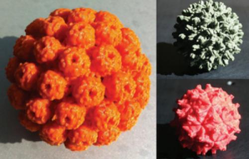 Des outils imprimés en 3D aident DeRisi Lab à étudier des maladies
