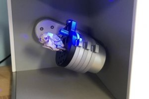 Artec Micro capture un crâne d'écureuil en 3D couleurs avec une précision submillimétrique en quelques minutes