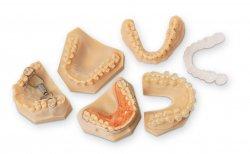 Matériaux Dentaires